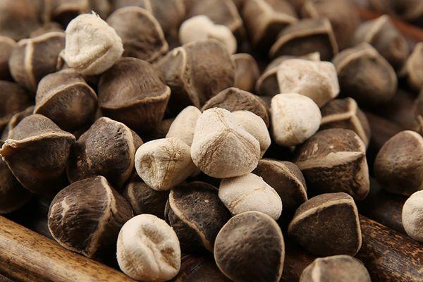 辣木籽怎样吃减肥效果好