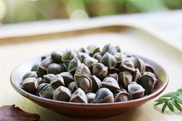 能减肥的辣木籽