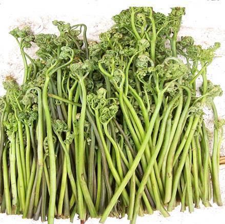 如何补血益气,补血益气蕨菜汤的制作方法